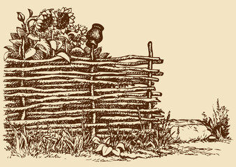 Vector sketch of old wicker fence with sunflowers