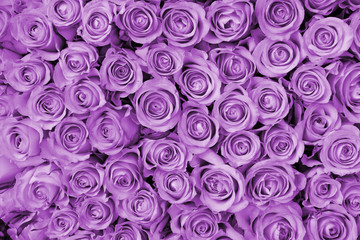 Purple wedding arrangement