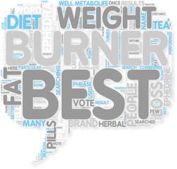 Concept of Best Fat Burner