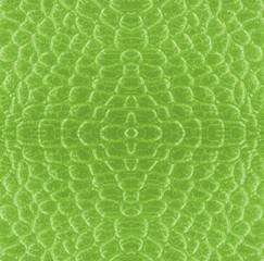 fragment of green snake skin pattern
