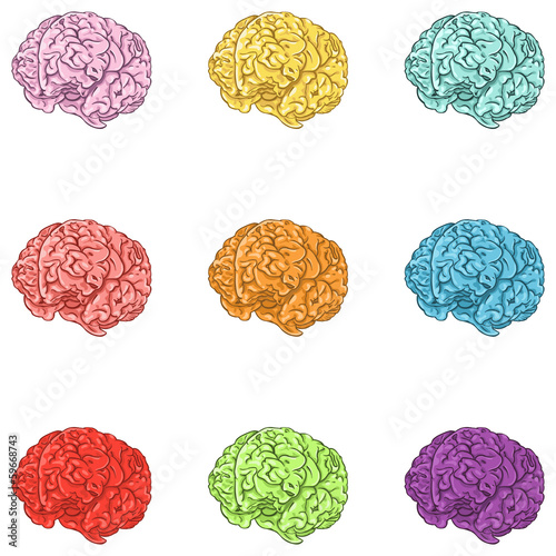 vector set of color cartoon brains