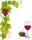 grapevine and wine glass