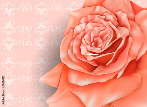 Vintage background with beautiful pastel rose