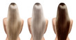 Hair tones. Hair coloring. Perfect long straight hairstyle - 59677550