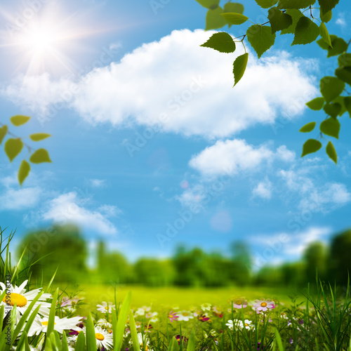 Beauty natural landscape under blue skies and bright sun