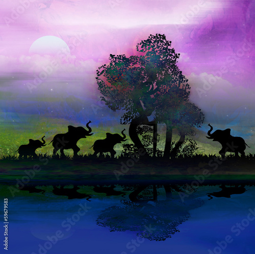 Silhouette of elephants in Africa theme setting with beautiful c