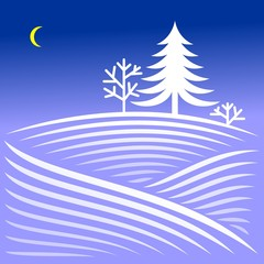 Rural winter evening landscape with spruce