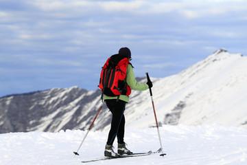 Ski de fond, nordique