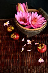Pink water lily in the Indonesian basket with mangosteen