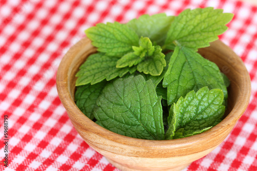 A bowl of freshly picked Lemon balm