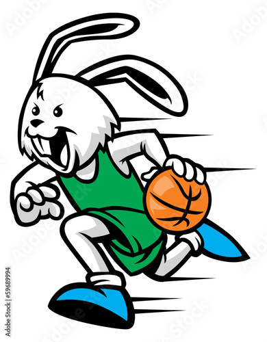 rabbit play basketball