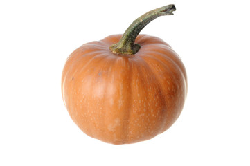 Rounded Pumpkin
