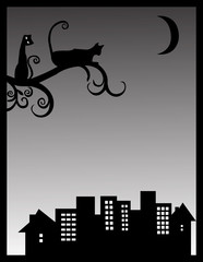 Ночные коты
