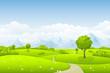 Sommerlandschaft mit Baum - 59697753