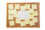 Corkboard and blank paper notes.