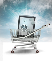 bought wealth in shopping cart with sky