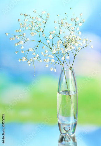 Flowers in vase on natural background