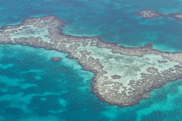 Barrier reef in the Caribbean
