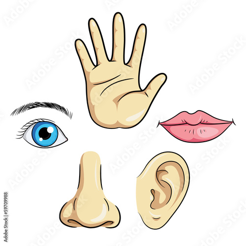 Eye Ear Nose Lips & Hand
