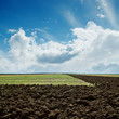 green and plowed fields under cloudy sky