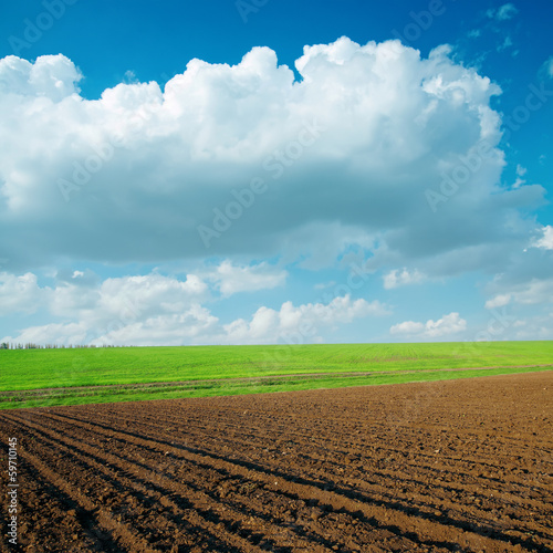 agriculrural fields and clouds over it
