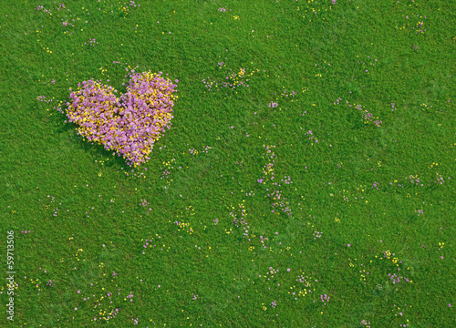 Valentine heart made of fresh flowers