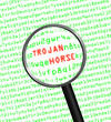 Magnifying glass finds trojan horse in computer code
