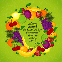 Healthy lifestyle-fruit circle