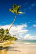 Karibischer Traumstrand  :)