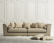 Luxury classic elegant white  living room with rug