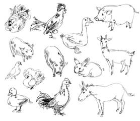 Farm animals. Set. Hand-drawn