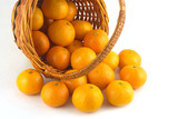 Strewed tangerines and inverted wicker basket isolated close up