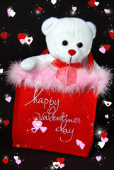 teddy bear in valentine bag