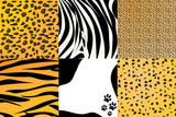 Vector illustration of animal skin