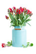 spring tulip flowers in blue pot