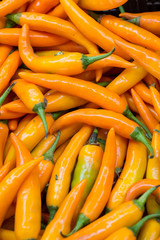 spicy yellow chilly peppers for sale