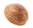 One Nutmeg Isolated on white background