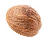 One Nutmeg Isolated on white background