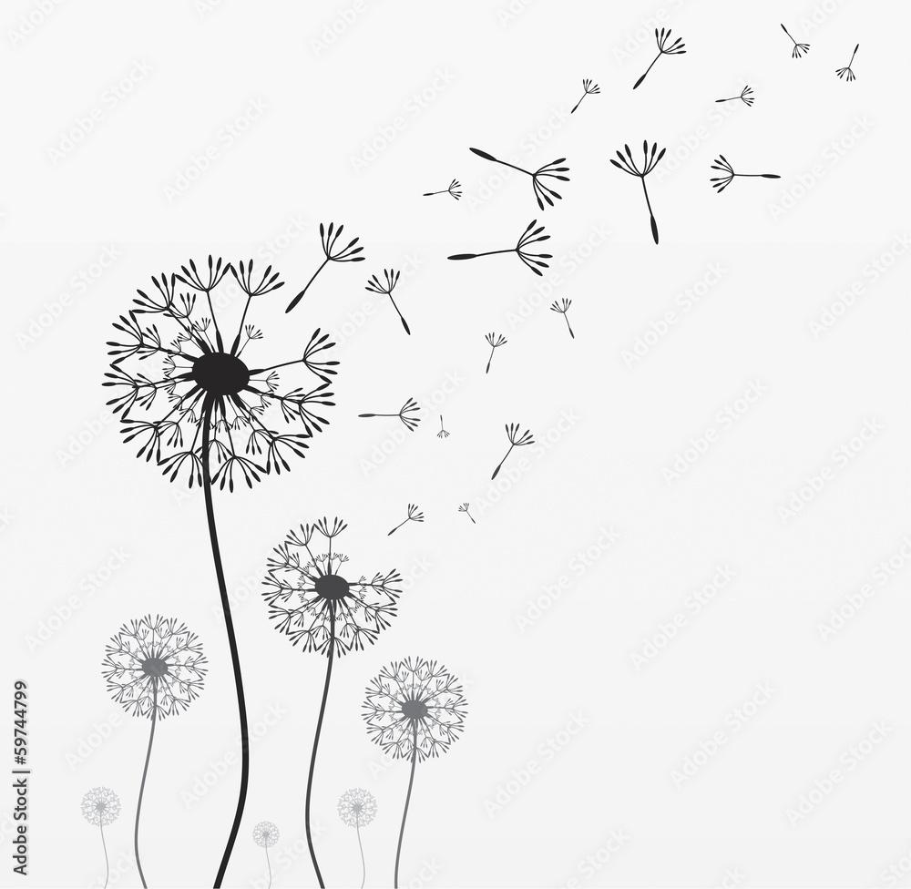 kwiat natura wiatr - powiększenie