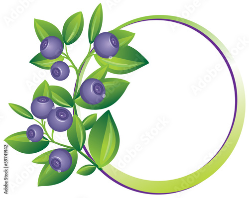 Berry frame.Blueberry branch isolated.