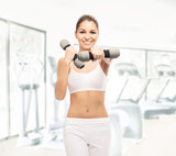 A fit and beautiful girl with dumbbells training in the gym