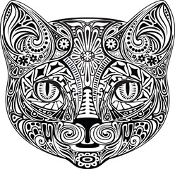 Cat, black and white