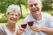 Portrait of senior couple toasting wine glasses at park