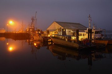 Steveston Night Dock Fog
