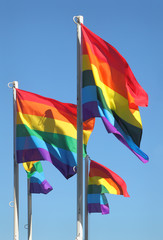 Gay Pride Flags, Vancouver, British Columbia