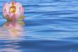 fleur de lotus et Bouddha doré en offrande à la mer
