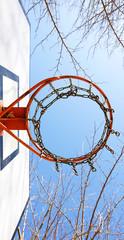 Cesta de basquet