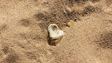 Perservativo usado sobre la arena