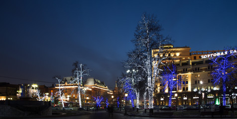 Trees illuminated to Christmas holidays at night in Moscow