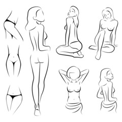 female sexy, intime, beauty body outline parts,